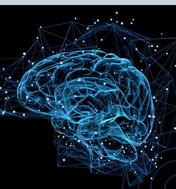 Neuropsicologia Clínica | Turma 11